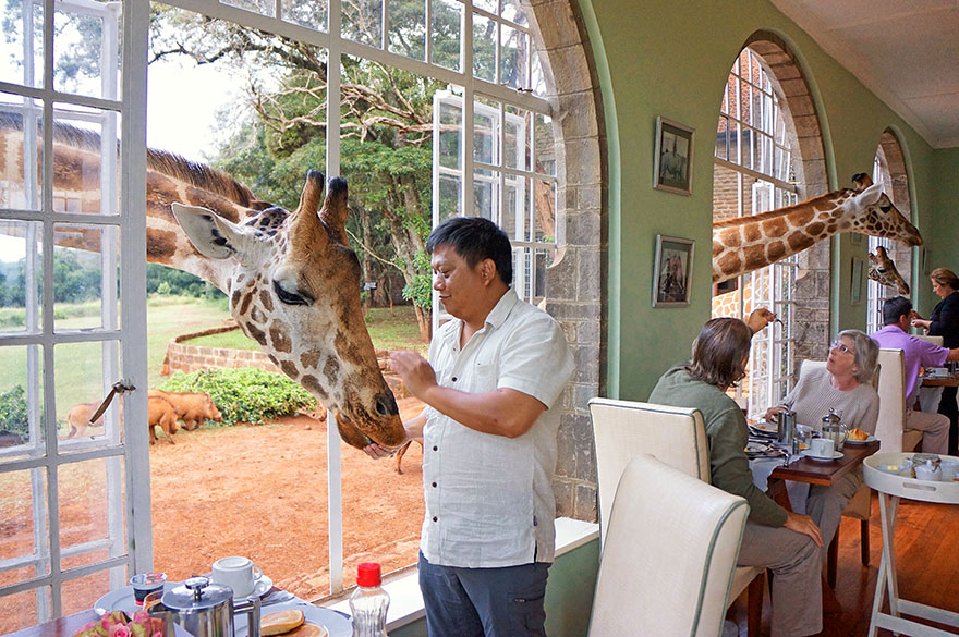 24 Giraffe Manor, Kenya-01