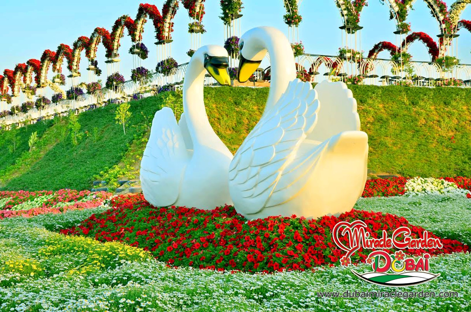 Dubai Miracle Garden The World S Biggest Natural Flower Garden With Over 45 Million Flowers Architecture Design