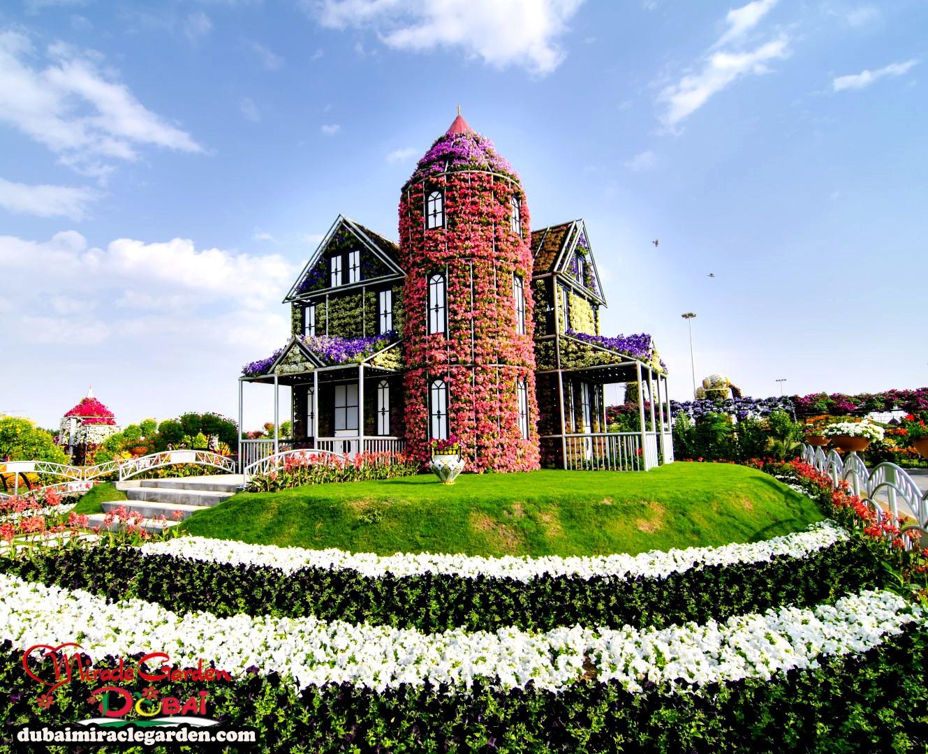 Natural Flower Garden : Dubai miracle garden the world s biggest natural flower