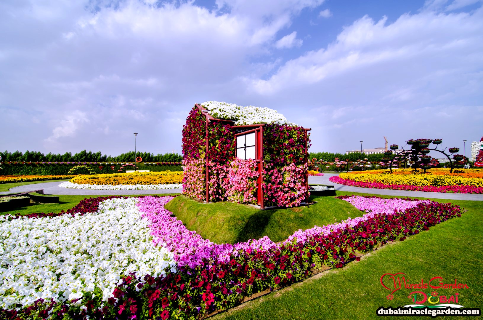 Dubai Miracle Garden The World s Biggest Natural Flower Garden With Over 45 Million Flowers