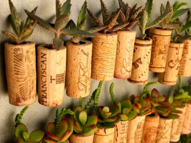 14-DFY-Tiny-Gardens-Wine-Cork