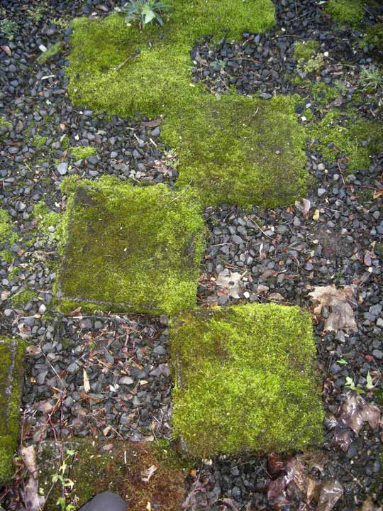 25-Lovely-DIY-Garden-Pathway-Ideas-10