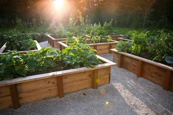 25 Lovely DIY Garden Pathway Ideas 17