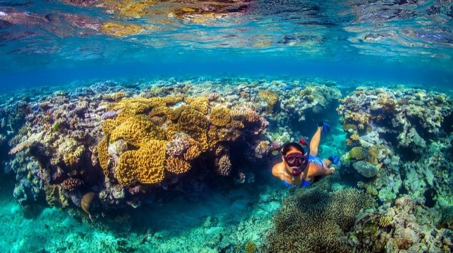 32-Great-Barrier-Reef-Australia