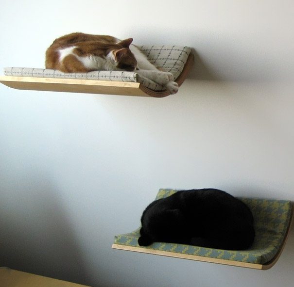 44-creative-beds-cat-bed