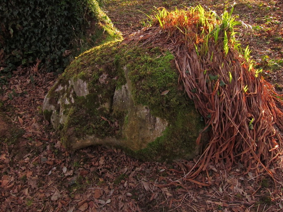 Gardens-of-Heligans-02-2