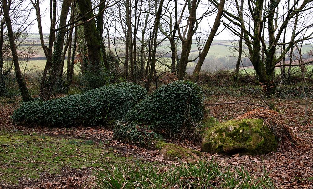 Gardens-of-Heligans-03-2