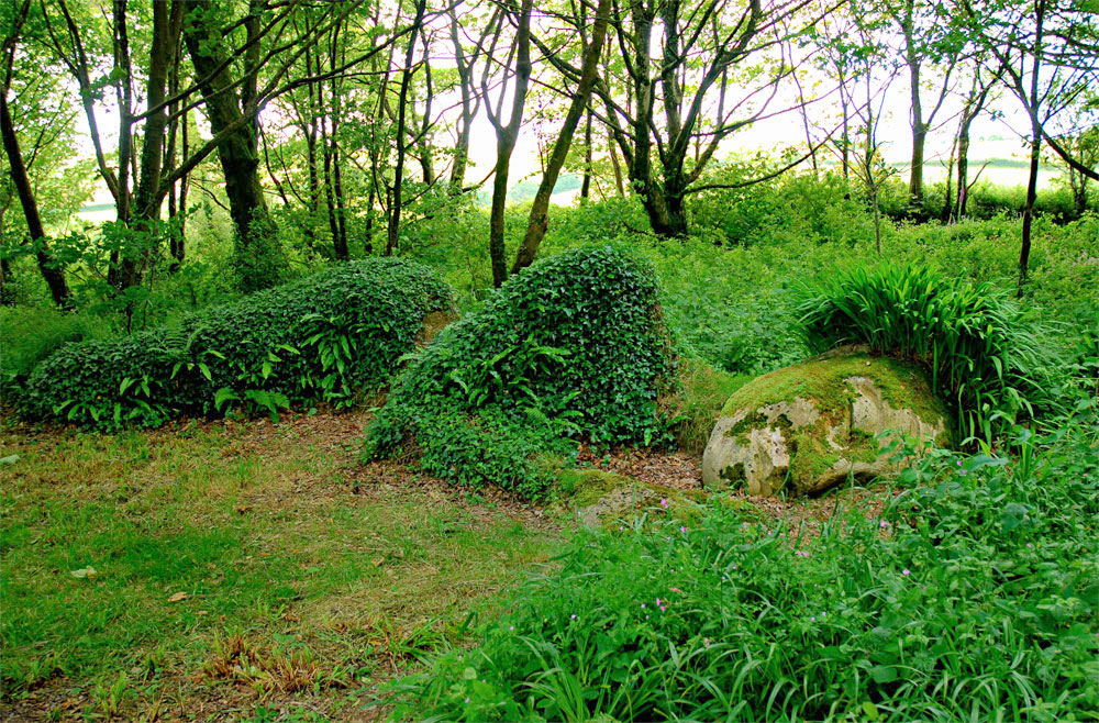Gardens-of-Heligans-03