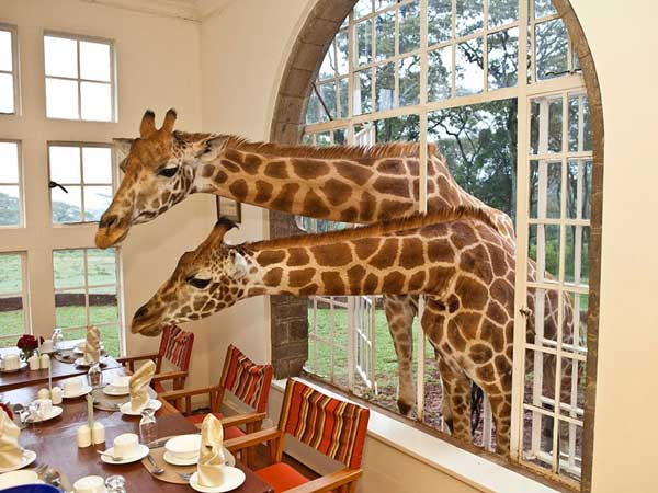 Hotels-That-Are-So-Cool-20-3
