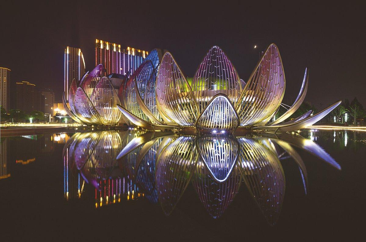 The Lotus Building 02