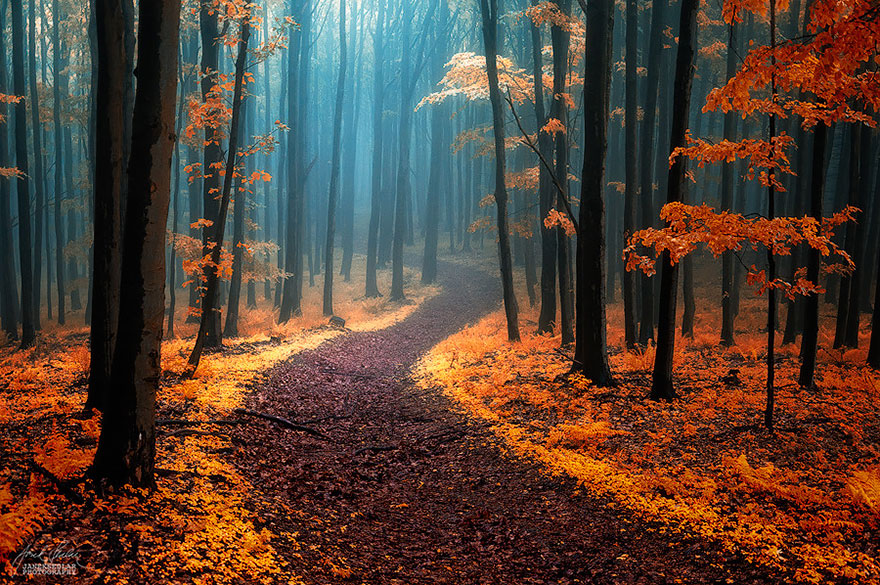 amazing-paths-3