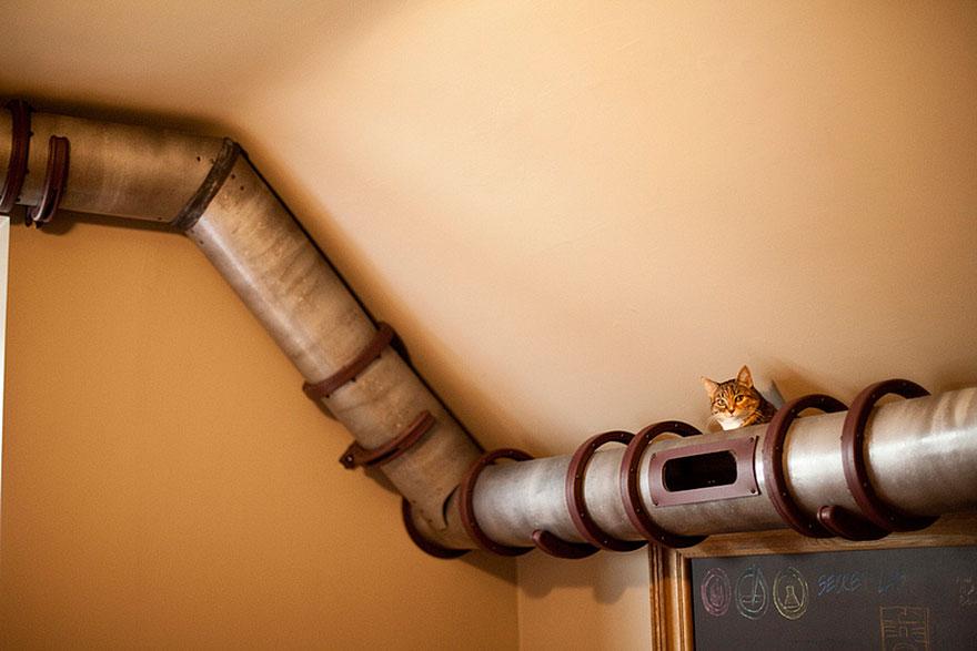 cat-furniture-creative-design-14