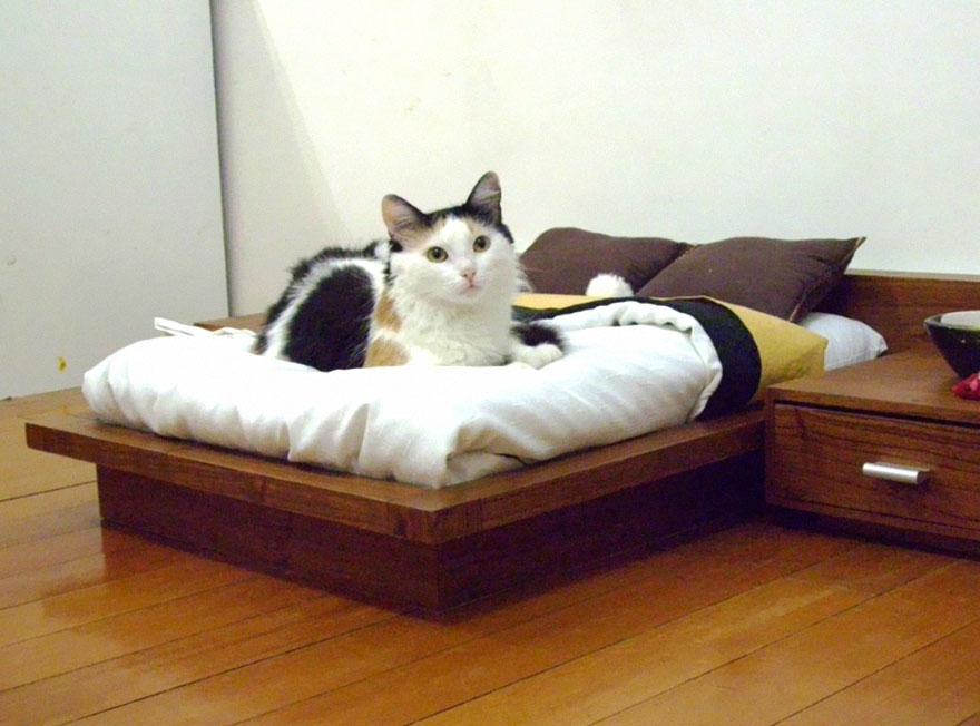 cat-furniture-creative-design-4