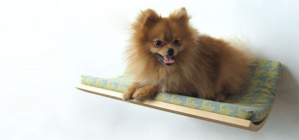 furniture-design-for-pet-lovers-16