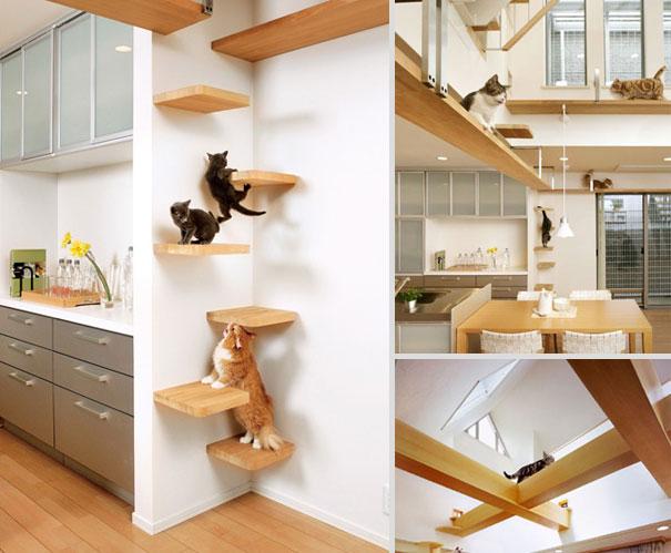 furniture-design-for-pet-lovers-24