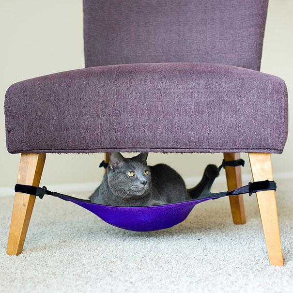 furniture-design-for-pet-lovers-26