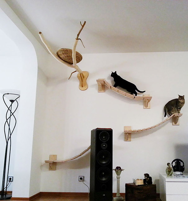 furniture-for-pet-lovers-34