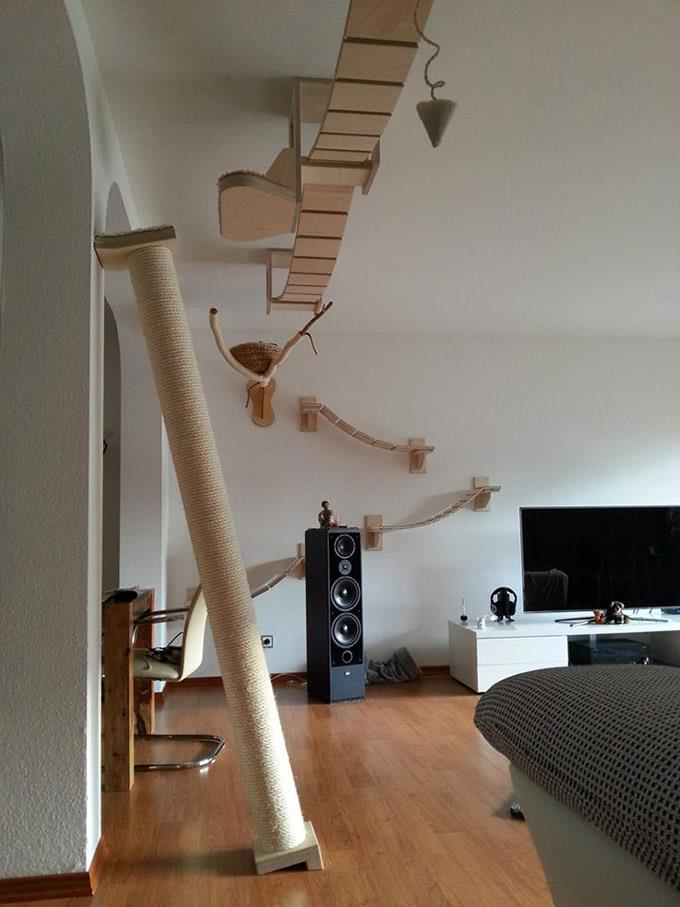 35 cool ideas to make your home awesome architecture for Cool cat perches