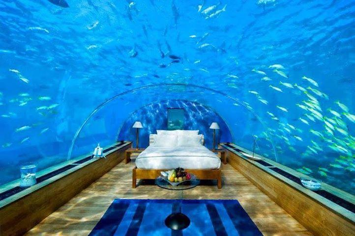 Underwater Themed Room. 4