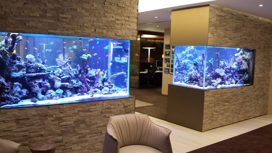 30 incredibly awesome ideas to beautify your home with aquariums - Pecera de pared ...