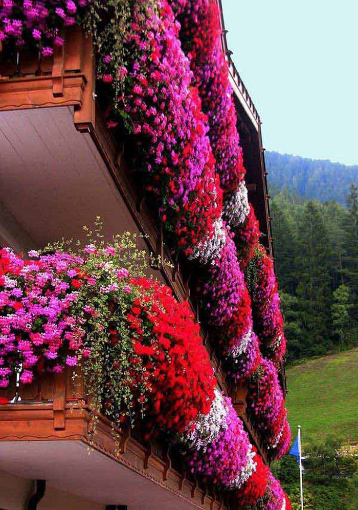 AD-Magnificent-Gardens-You-Can-Have-On-Your-Balcony-01