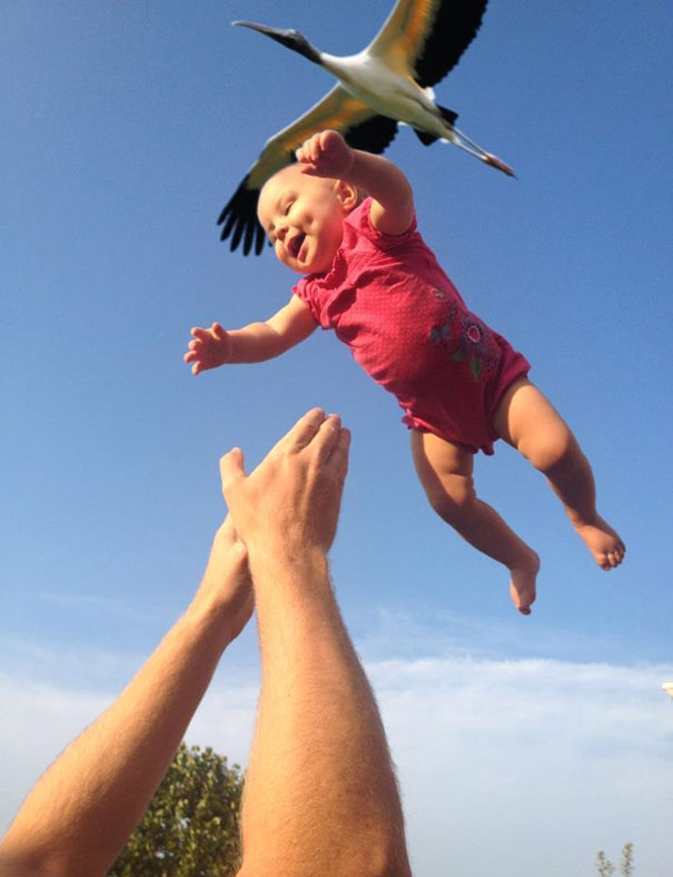perfectly-timed-photos-35
