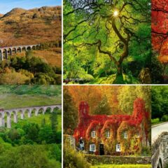 12 Beautiful Places Transformation in Autumn