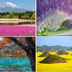 The 22 Most Unbelievably Colorful Places On Earth