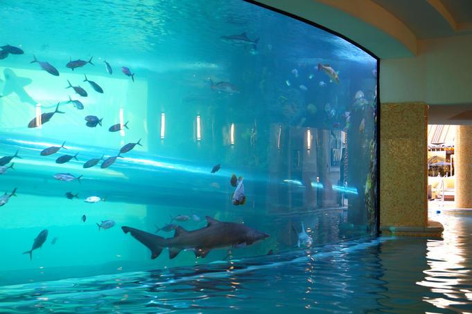 10-Amazing Pools