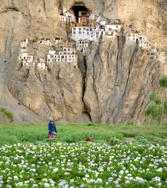 40-Phuktal_Monastery_in_Ladakh_India