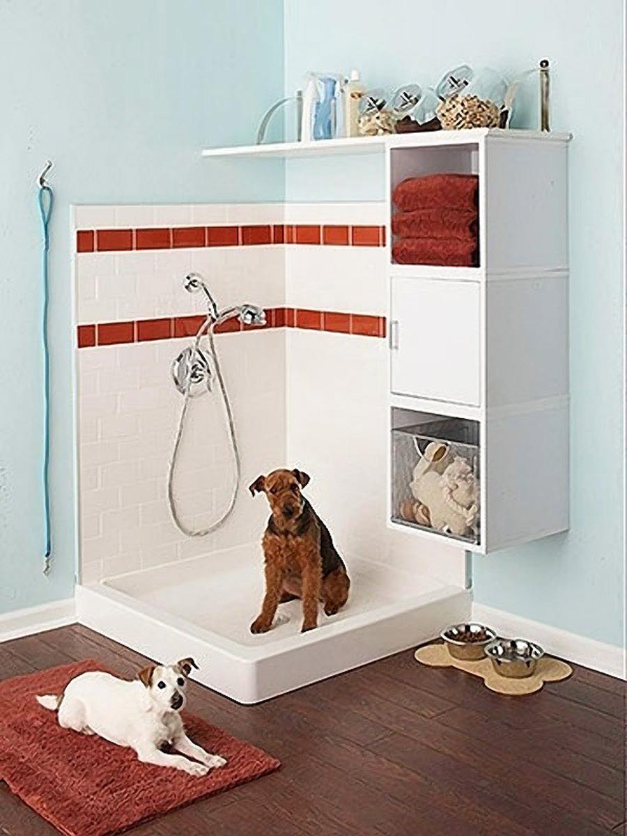 6-dog-shower-area