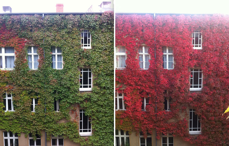 same-place-different-season-before-after-7
