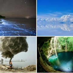 Craziest Things In Nature You Won't Believe Actually Exist