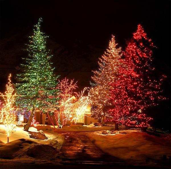 Outdoor-Christmas-Lighting-Decorations-46