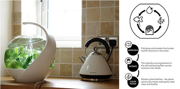 33 insanely clever inventions you wish you owned for Avo fish tank