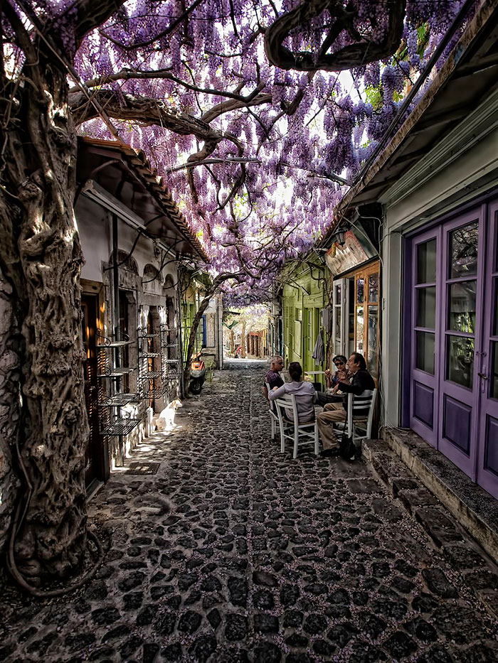 AD-World's-Magical-Streets-1