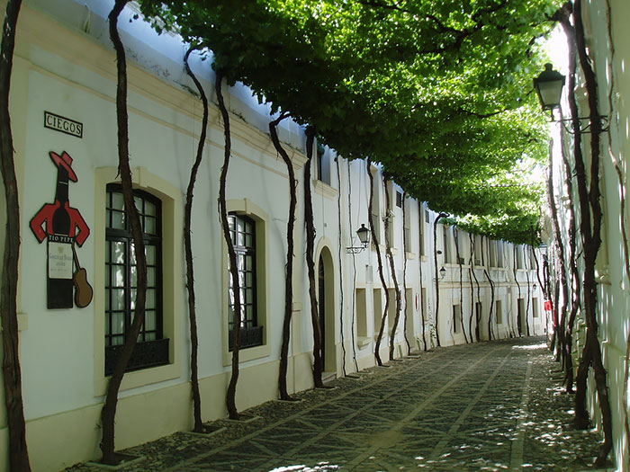 AD-World's-Magical-Streets-10