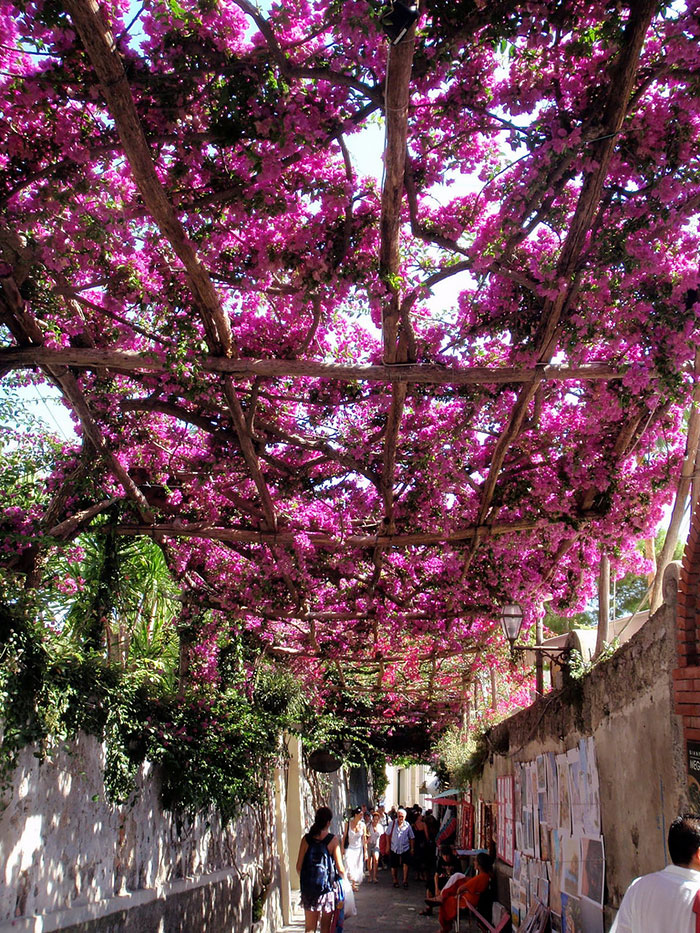 AD-World's-Magical-Streets-15