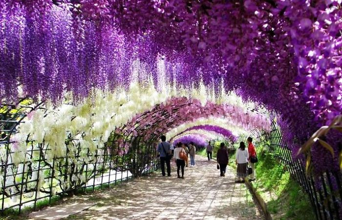 AD-World's-Magical-Streets-16