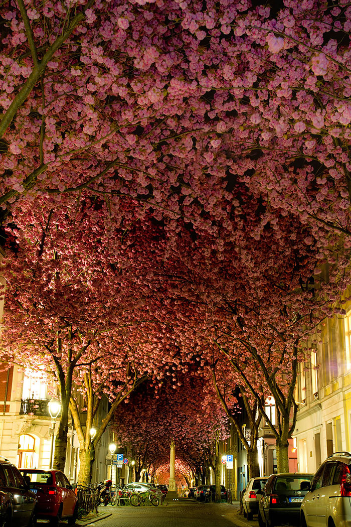 AD-World's-Magical-Streets-2