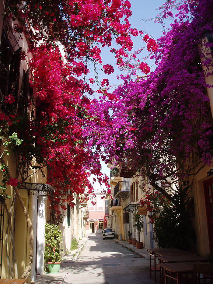 AD-World's-Magical-Streets-20