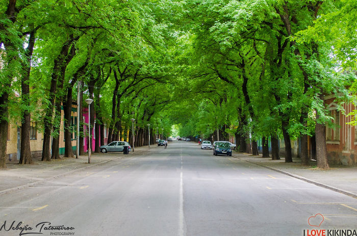 AD-World's-Magical-Streets-22