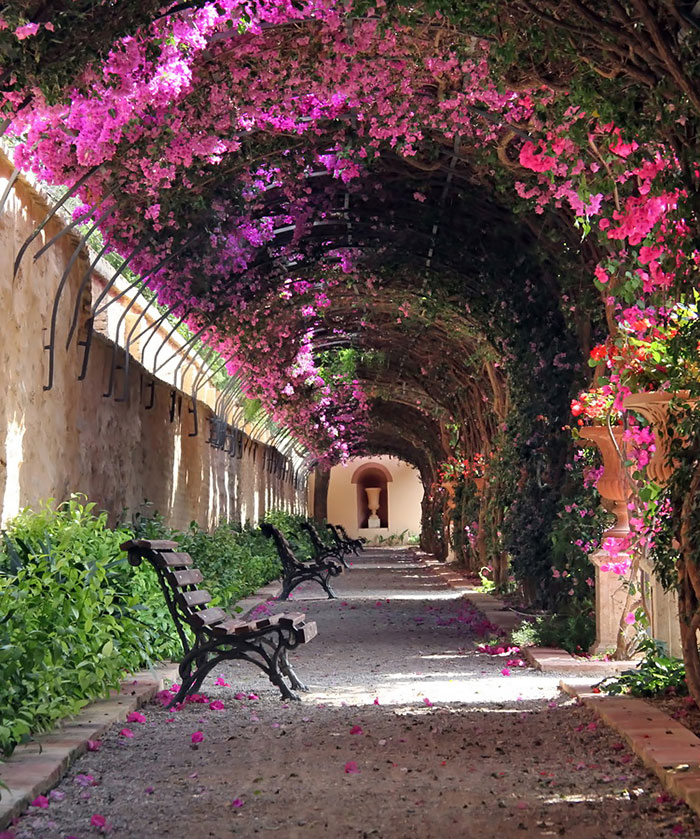 AD-World's-Magical-Streets-4