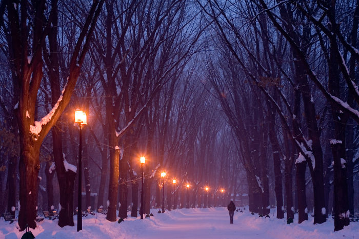 AD-World's-Magical-Streets-46