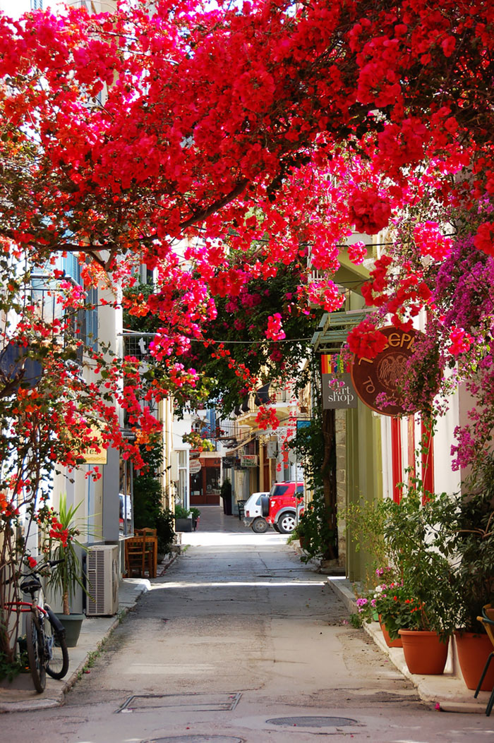 AD-World's-Magical-Streets-7