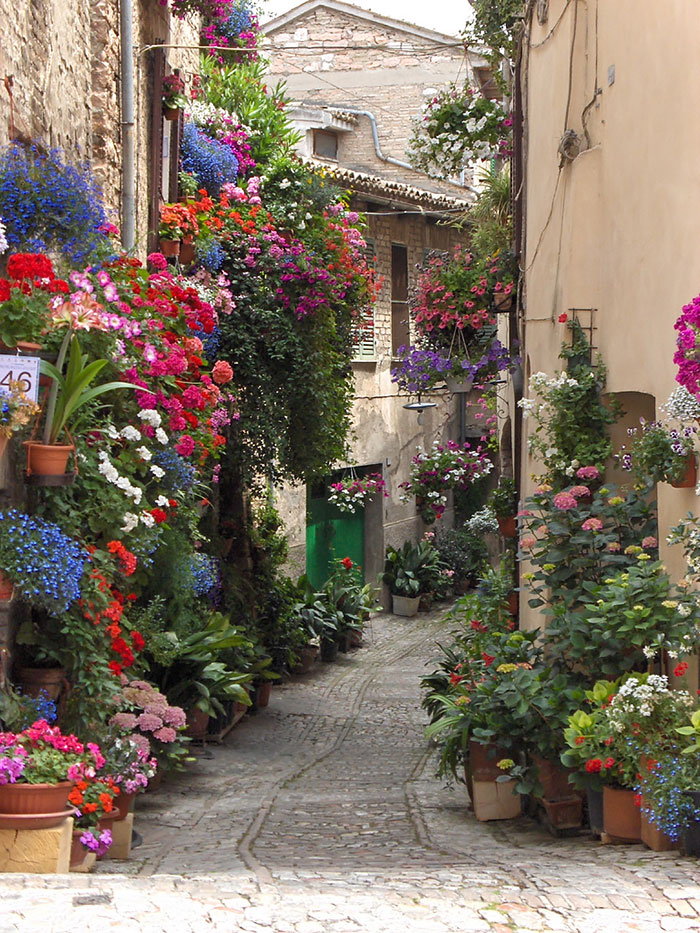 AD-World's-Magical-Streets-8