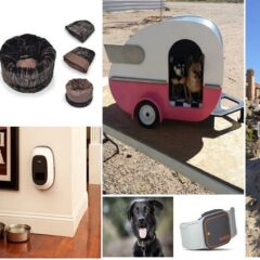 40+ Insanely Clever Products Your Dog Deserves To Own