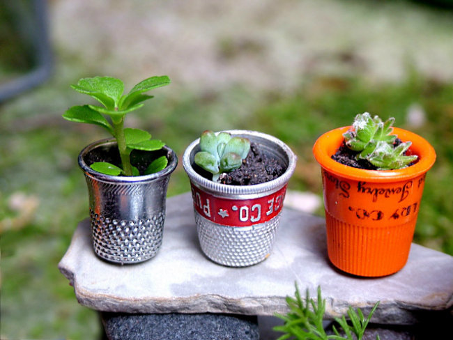 AD-Gorgeous-Tiny-Gardens-3