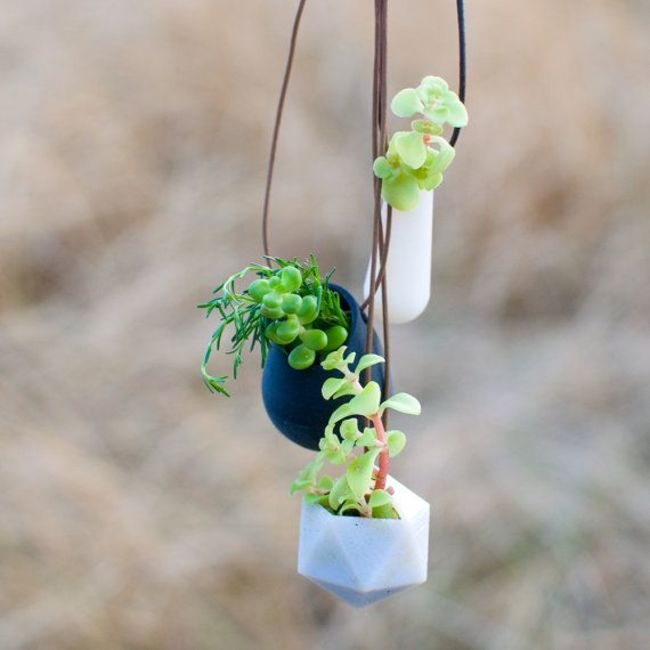 AD-Gorgeous-Tiny-Gardens-8