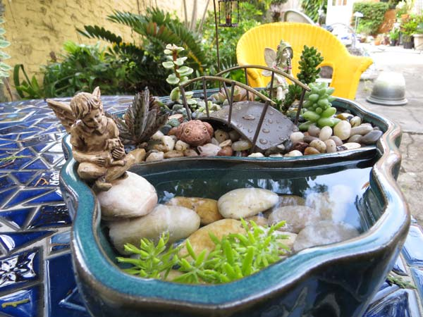 AD-Mini-Pond-In-A-Pot-20